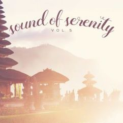 Various Artists: Sound of Serenity, Vol. 5