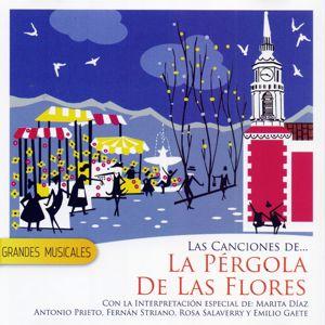 La Pergola De Las Flores: Grandes Musicales