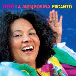 Totó La Momposina: Pacantó