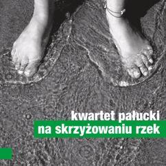 Kwartet Palucki: Na Skrzyzowaniu Rzek