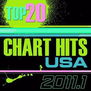 The CDM Chartbreakers: Top 20 Chart Hits 2011_1 USA