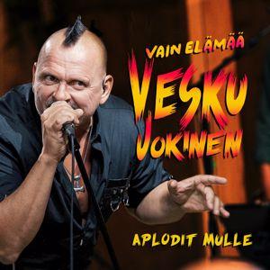 Vesku Jokinen, Klamydia: Aplodit mulle (Vain elämää kausi 11)