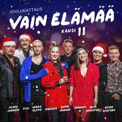 Various Artists: Vain elämää - kausi 11 joulukattaus
