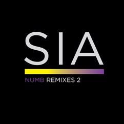 Sia: Numb Remixes 2