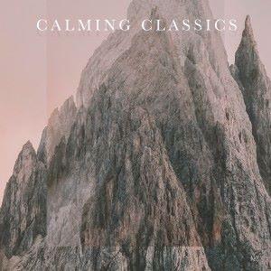 Various Artists: Calming Classics - No. 3