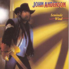John Anderson: Seminole Wind