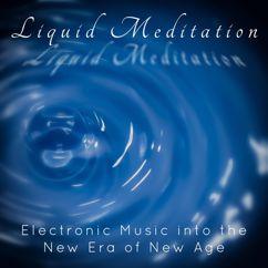 Various Artists: Liquid Meditation