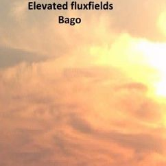 Elevated Fluxfields: Bago
