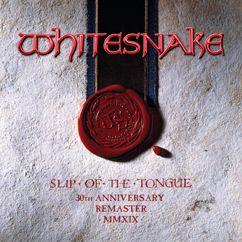 Whitesnake: Wings of the Storm