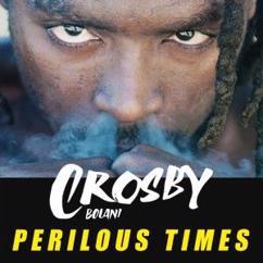 Crosby Bolani: Perilous Times