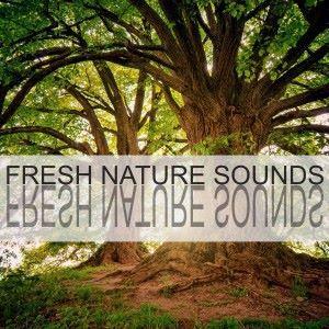 Nature Sounds: Fresh Nature Sounds