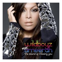 Wildboyz, Ameerah: The Sound of Missing You (feat. Ameerah)