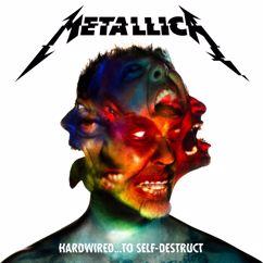 Metallica: Now That We're Dead