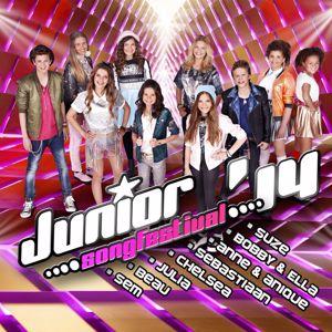 Various Artists: Junior Songfestival 2014