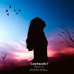 Cvetocek7: Крылья мои(Soloway Remix)