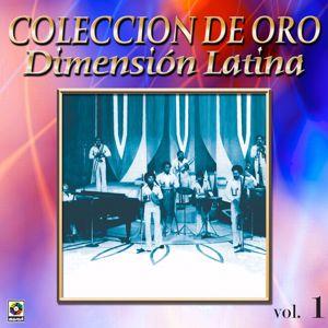Dimension Latina: Colección De Oro: A Bailar La Salsa Con Dimensión Latina, Vol. 1