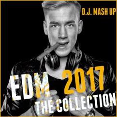 Various Artists: EDM 2017: The Collection (Electronic Dance Music)