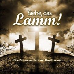 MountainSpringSingers & Friends: Siehe, das Lamm