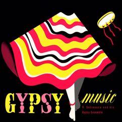 Vladimir Selinescu and His Gypsy Ensemble: Gypsy Music