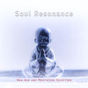 Various Artists: Soul Resonance