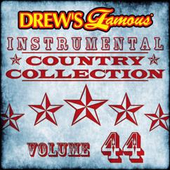 The Hit Crew: Drew's Famous Instrumental Country Collection (Vol. 44)