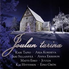 Various Artists: Joulun tarina