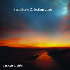Various Artists: Best Music Collection 2020