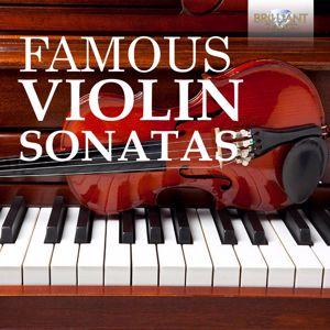 Various Artists: Famous Violin Sonatas
