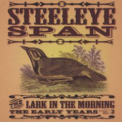 Steeleye Span: Female Drummer