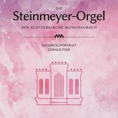 Gerald Fink: Die Steinmeyer-Orgel der Klosterkirche Münchaurach
