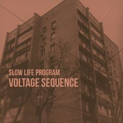 Slow Life Program: Voltage Sequence