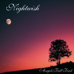 Nightwish: Nymphomaniac Fantasia