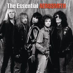 Aerosmith: The Essential Aerosmith