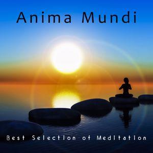 Various Artists: Anima Mundi