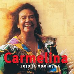 Totó La Momposina: Carmelina
