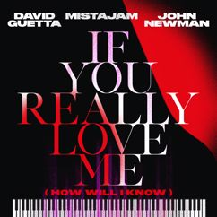 David Guetta, MistaJam, John Newman: If You Really Love Me (How Will I Know)
