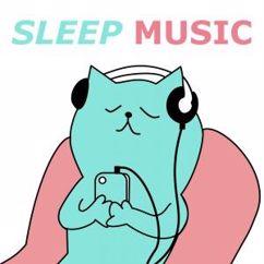 Various Artists: Sleep Music