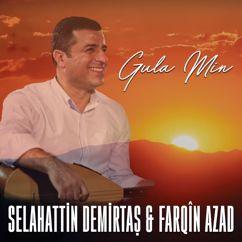 Selahattin Demirtaş & Farqîn Azad: Gula Min