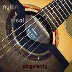 nylon & steel: Singularity