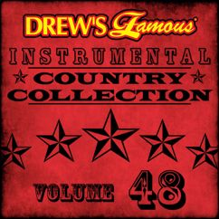 The Hit Crew: Drew's Famous Instrumental Country Collection (Vol. 48)