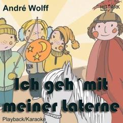Andre Wolff: Ich geh mit meiner Laterne