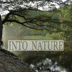 Nature Sounds: Into Nature