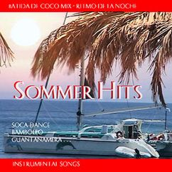 The Caribian Dance Band: Sommer Hits