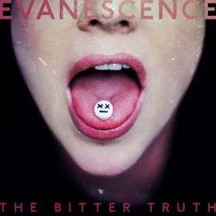 Evanescence: Feeding the Dark