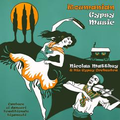 Nicolas Matthey and His Gypsy Orchestra: Roumanian Gypsy Music