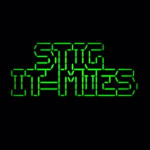 STIG: IT-mies