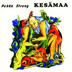 Pekka Streng: Kesämaa