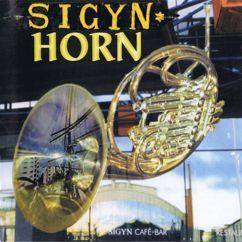 Various Artists: Sigyn Horn