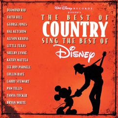 Various Artists: The Best of Country Sing the Best of Disney