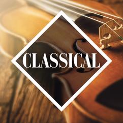 Various Artists: Classical: The Collection